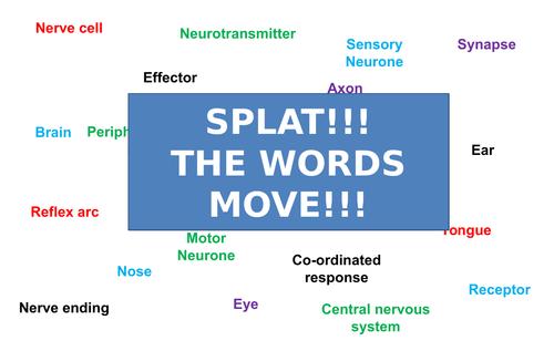 Nervous System | Moving Splat!!! | Game | Revision