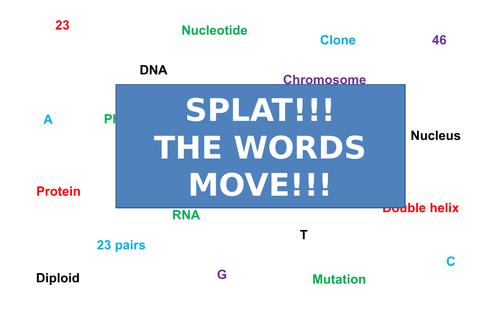 DNA Structure | Moving Splat!!! | Game | Revision