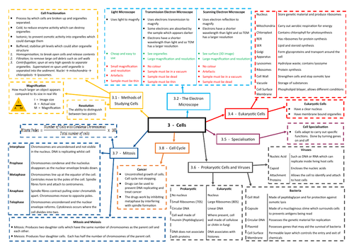 Cells Revision Mind Map - AQA AS/A Level Biology (7401/7402)