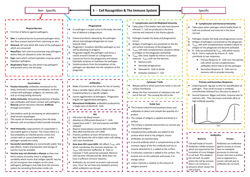 Cell Recognition and The Immune System Revision Mind Map - AQA AS/A Level Biology (7401/7402)