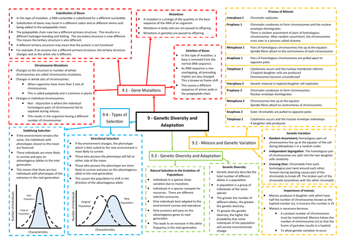 Genetic Diversity Revision Mind Map - AQA AS/A Level Biology (7401/7402)