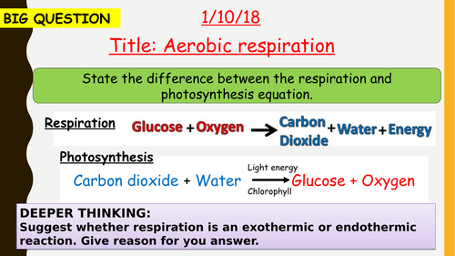 AQA new specification-Aerobic respiration-B9.1
