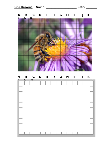Art and Design - Bee Grid Drawing - KS3 Observational Drawing Worksheet - Homework or Cover Work