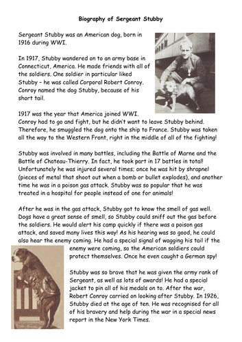 Biography of Sgt Stubby example/model text