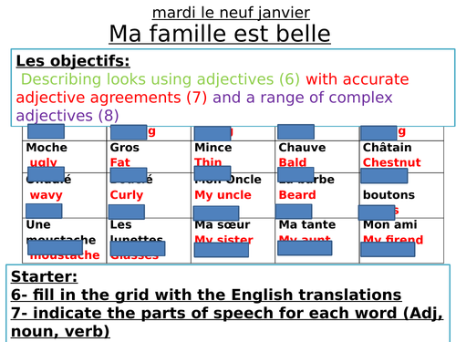 French Adjectival Agreement - appearance, family