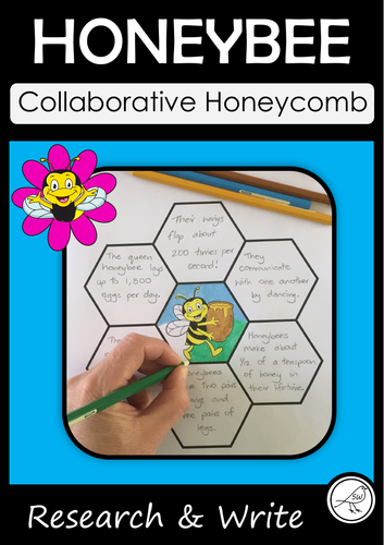Collaborative Teaching Resources ~ Suzanne welch teaching resources tes