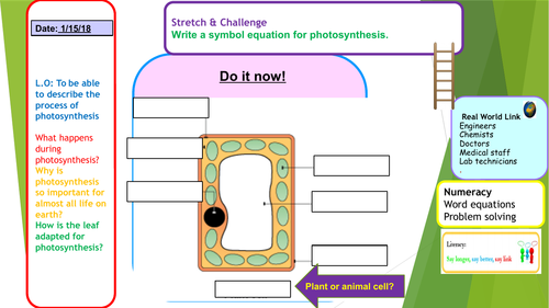 Aqa P2 Rapidough Or Pictionary Cards By Pand Teaching Resources Tes