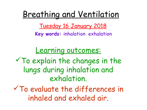 Breathing and Ventilation