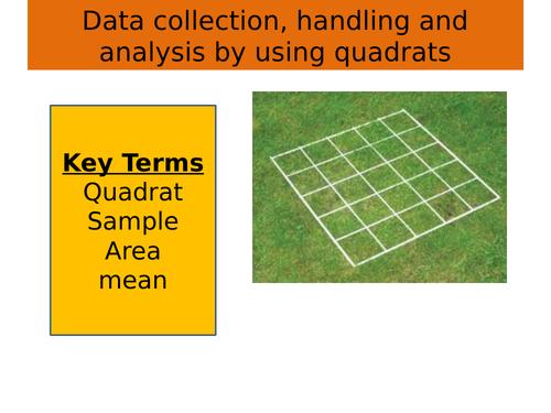 Data collection, handling and analysis: using quadrat