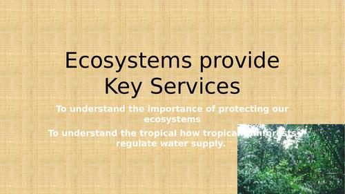 Theme 3 - Lesson 3B - Ecosystems provide Key Services