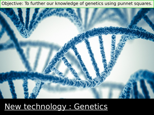 Genetics : Alleles and Punnet Square