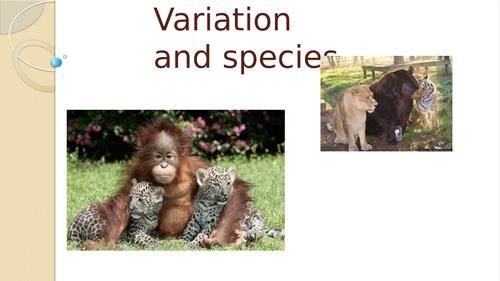 Variation and Species