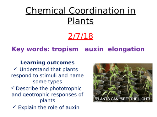 Chemical coordination in plants -  auxin and tropisms