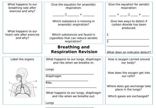 Breathing and Respiration Revision Sheet