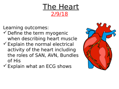 A2 Biology: The Heart and Electrical Activity