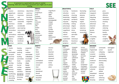 Synonym Learning Mat