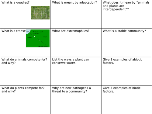 B15 - Adaptation Revision with ANSWERS