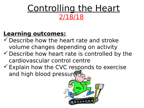 A2 Controlling the Heart Rate - cardiovascular control centre