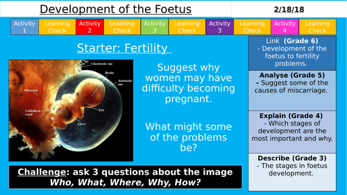 NEW AQA KS3 - Development of the Foetus (Reproduction)