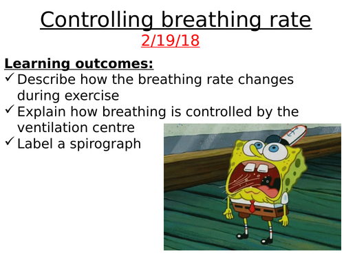 A2: Controlling the Breathing Rate. The role of the respiratory centre.