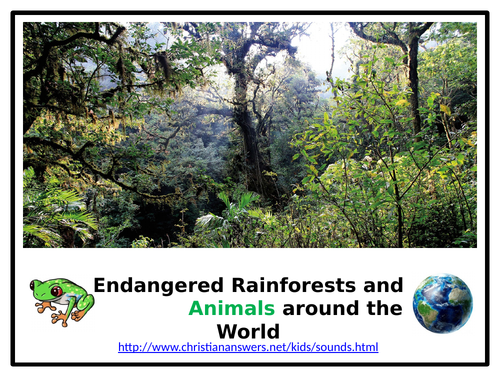 UOW: Endangered Rainforests and Animals
