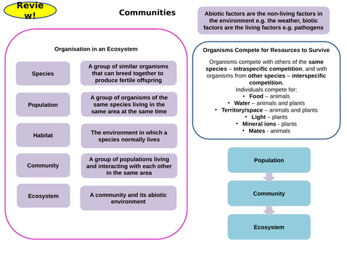 Ecology Topic 7 Part 1 Active Revision Card Activities for New AQA Biology GCSE