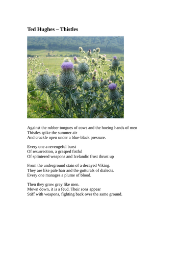 """KS3, KS4, Poetry, analysis, close reading, effect, Ted Hughes, """"Thistles"""" unseen, assessment,"""