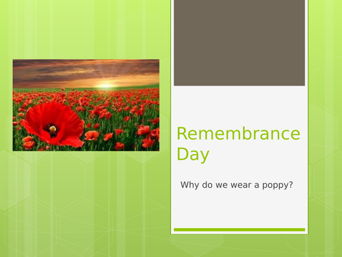 Remembrance Assembly - Why a poppy?
