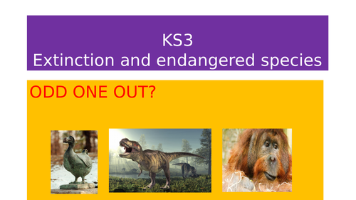 KS3 Extinct and Endangered species for low-level students