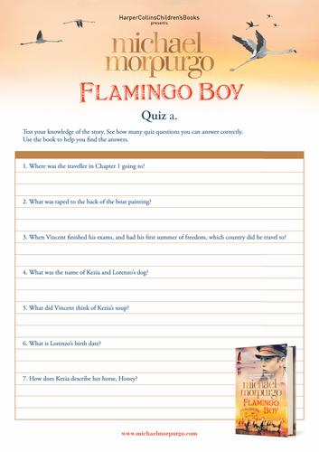 Michael Morpurgo Flamingo Boy Quiz