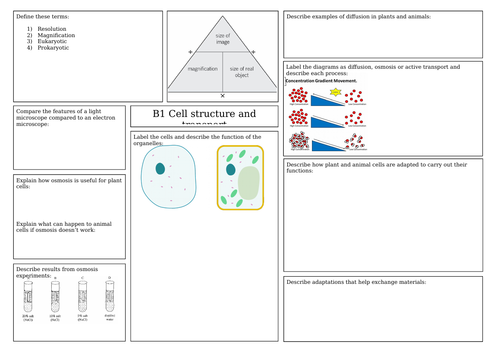 Biology combined science trilogy revision mats