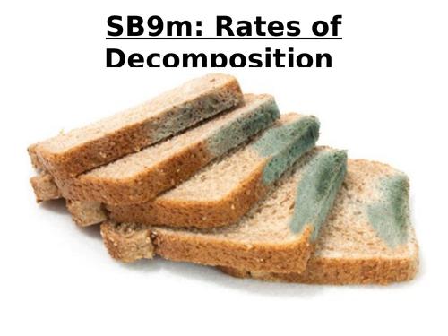 SB9m Rates of Decomposition