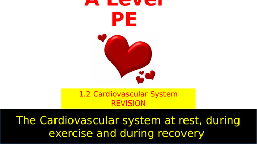 OCR A Level PE Cardiovascular system revision lesson