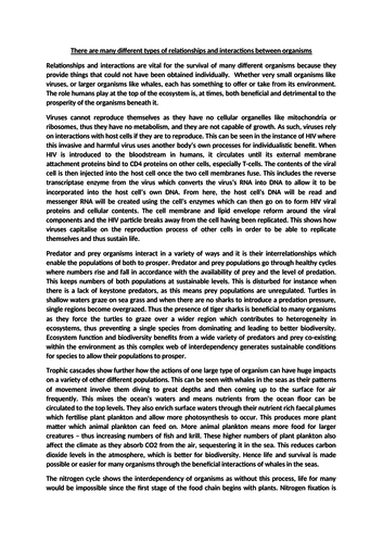 full mark alevel biology essay  how is energy transferred within  top mark alevel biology essay  different types of relationships and  interactions between organisms