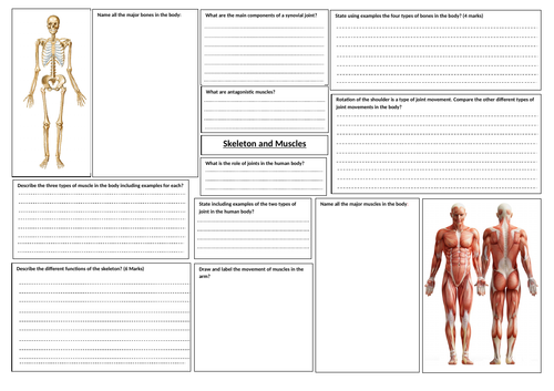 AQA GCSE PE Revision Learning Maps