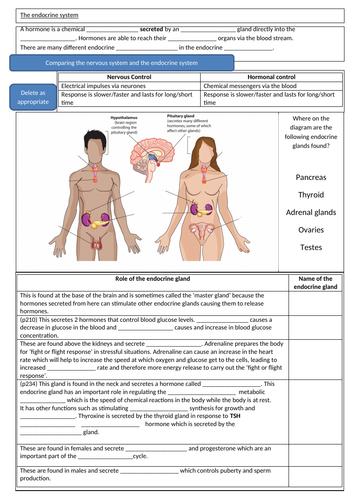 Hormones:- including menstrual cycle and plant hormones