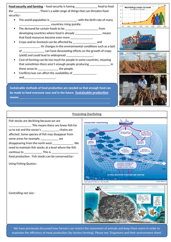AQA GCSE Biology Revision sheets on food production and security