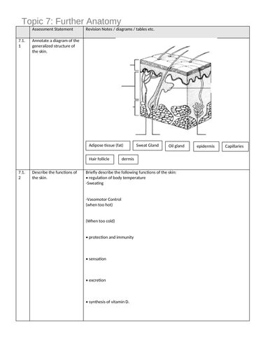 IB DP SEHS Higher Level Revision Sheet