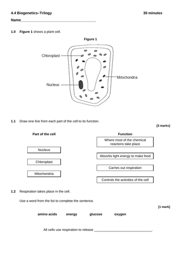 AQA biology - Trilogy - end of unit test - biogenetics