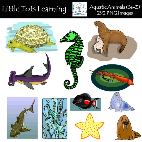 aquatic animals se z clip art commercial use by