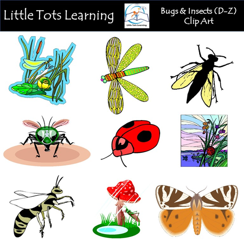 Bugs & Insects Clip Art (D-Z) - Commercial Use
