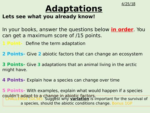 Adaptations and variation
