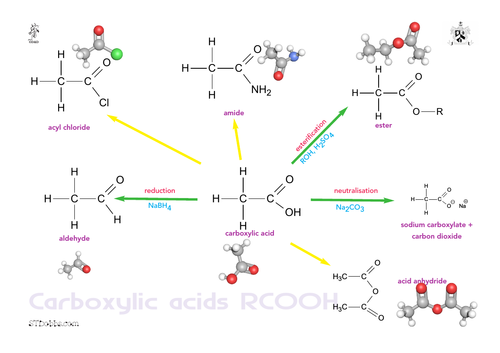 Perspective diagram for carboxylic acid