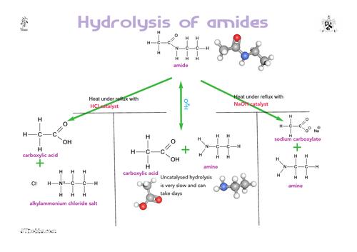 Hydrolysing amides