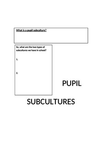 Pupil Subcultures revision