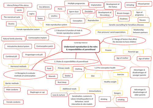Cambridge National Child Development RO18 LO1 revision mind map