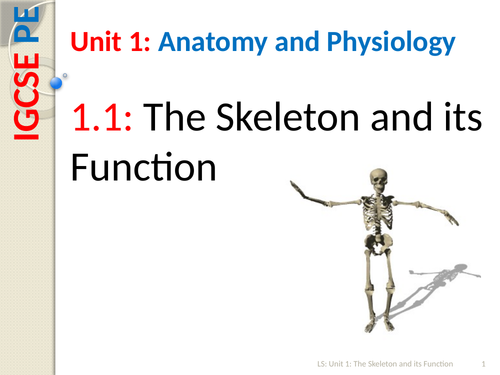 IGCSE PE (new spec 2018) 1.1. The Skeleton and its Function