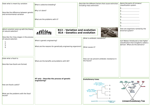 AQA Variation, evolution and genetics revision mat