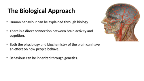 Biological Approach to psychology