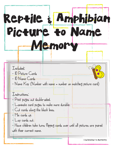 Reptile and Amphibian Picture to Name Memory